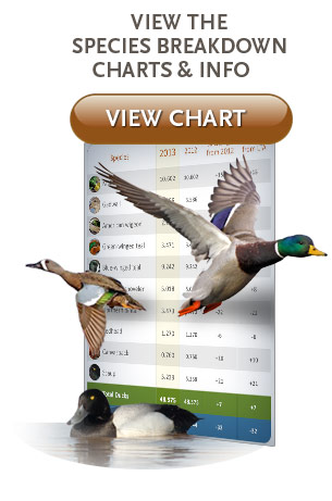 View speciesbreakdown, charts and info.